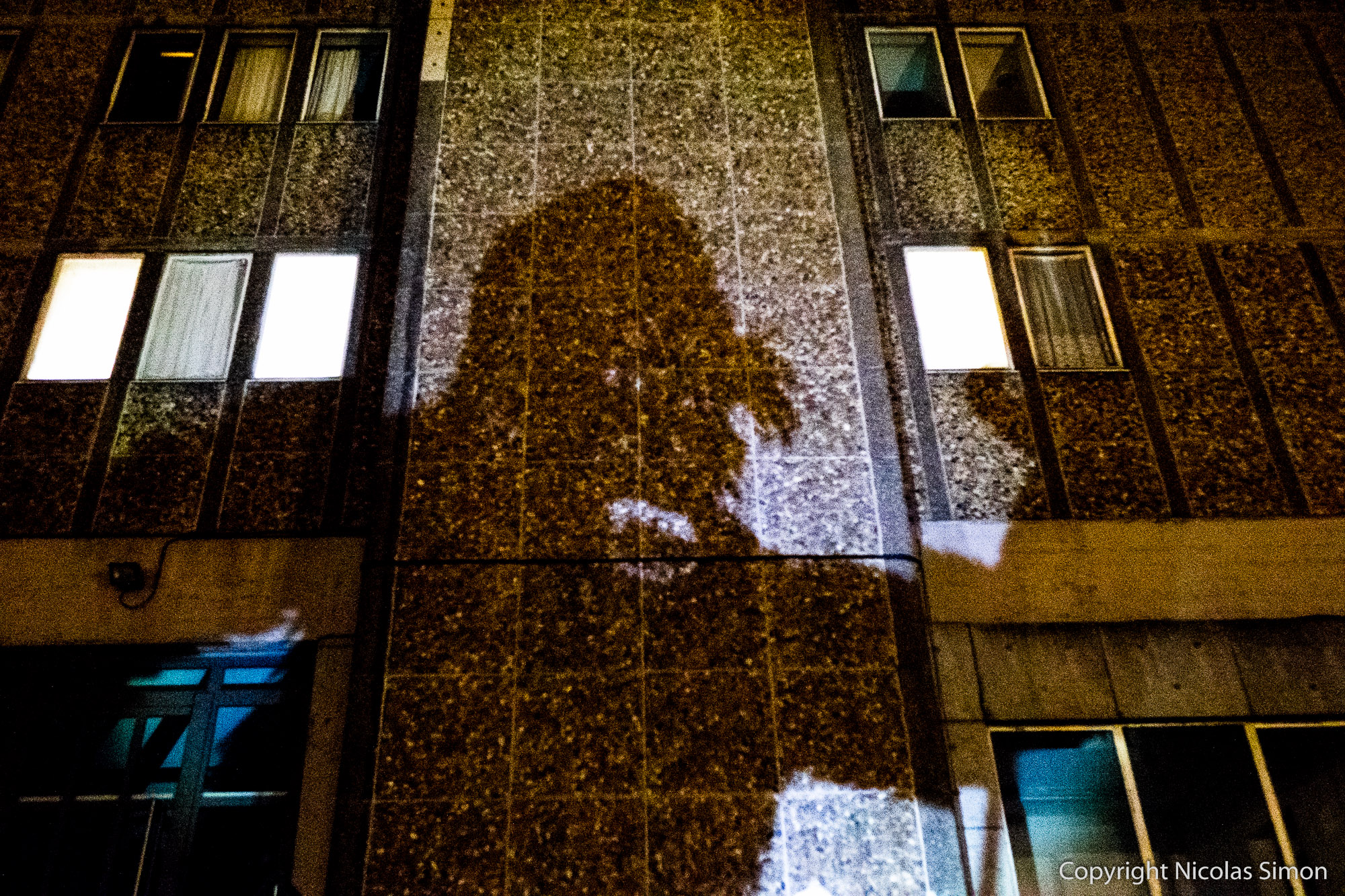 ombres-geantes-animalia_022-01609
